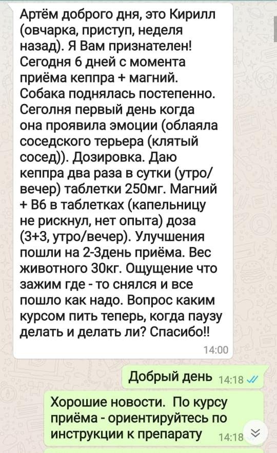 Отзыв из WhatsApp